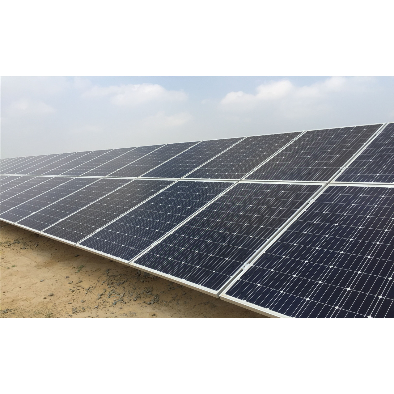 Longi 300w Lr6 60pb Solar Panel Is Available Online At A